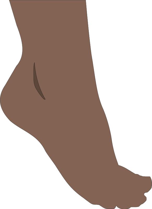 diabetes vías de cuidado de los pies en la asistencia sanitaria